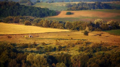 rural countryside village summer ukraine bukovina