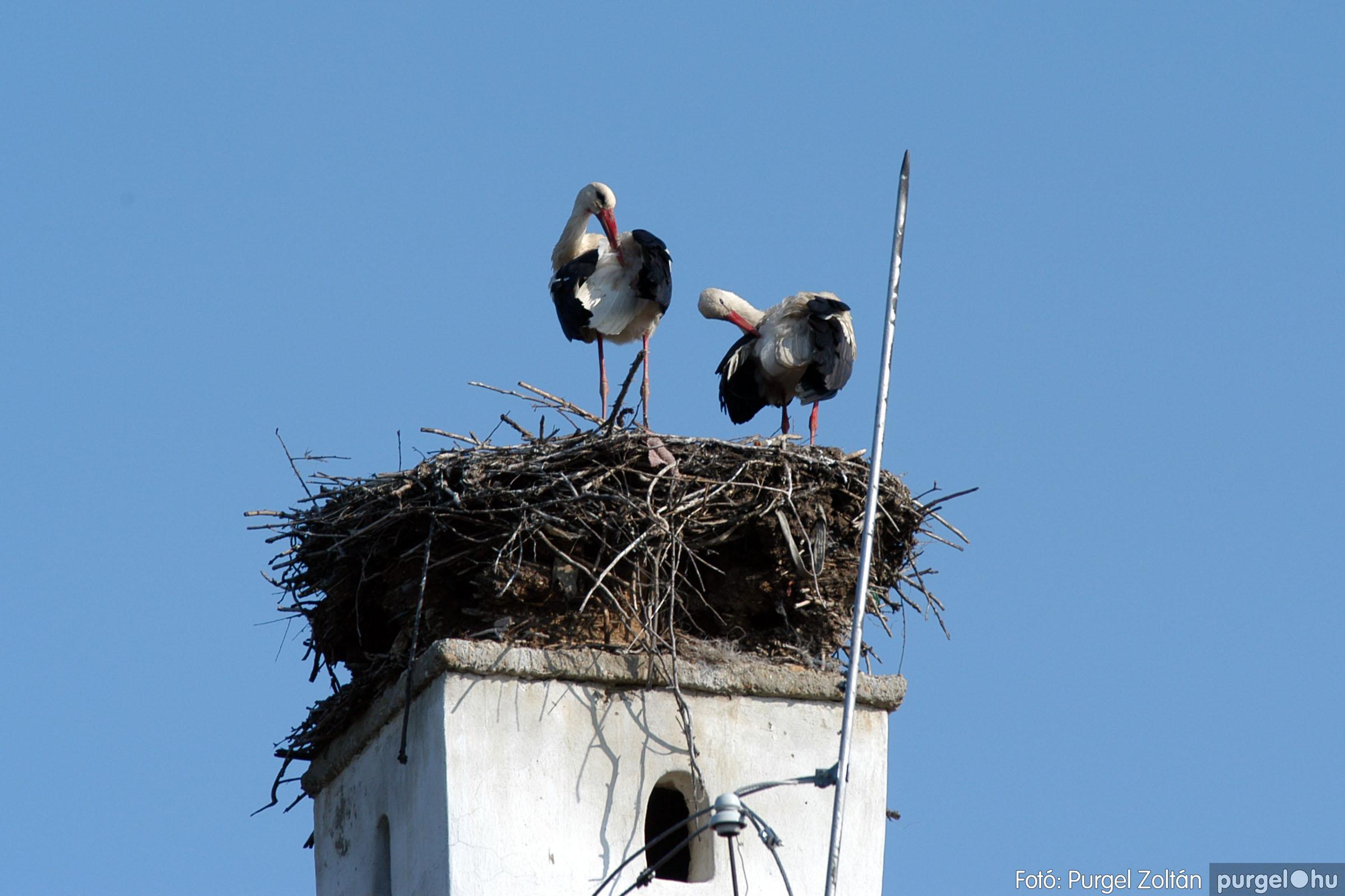 2006.04.15. 001 Megérkeztek a Falumúzeum lakói - Fotó:PURGEL ZOLTÁN© DSC_0463q.jpg