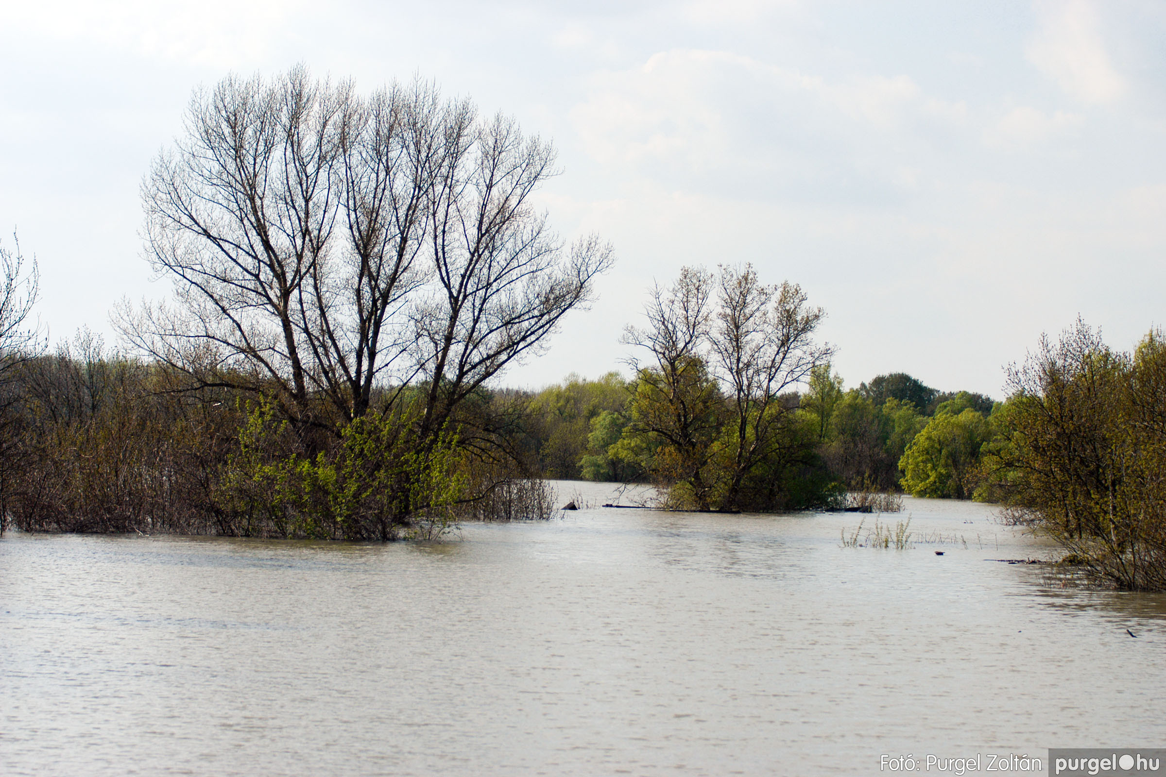 2006.04.17. 013 Tisza áradás - Fotó:PURGEL ZOLTÁN© DSC_0030q.jpg