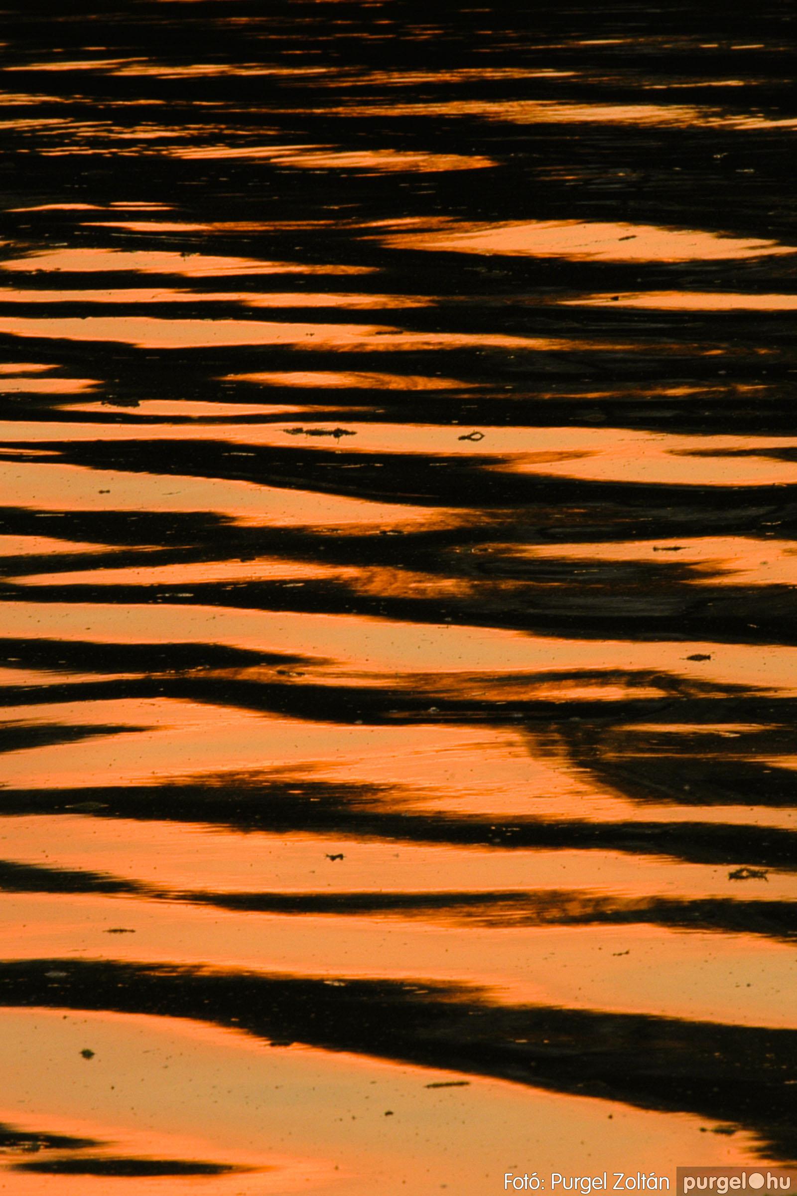 2006.04.29. 011 Tisza áradás - Fotó:PURGEL ZOLTÁN© DSC_0039q.jpg