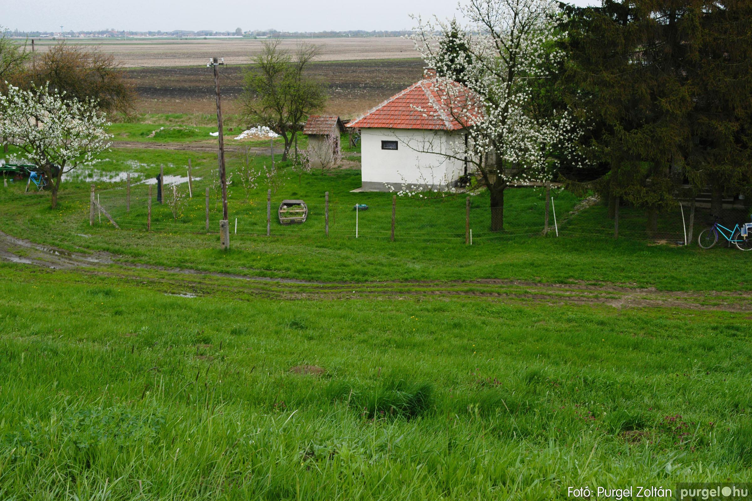 2006.04.19. 001 Tisza áradás - Fotó:PURGEL ZOLTÁN© DSC_0077q.jpg