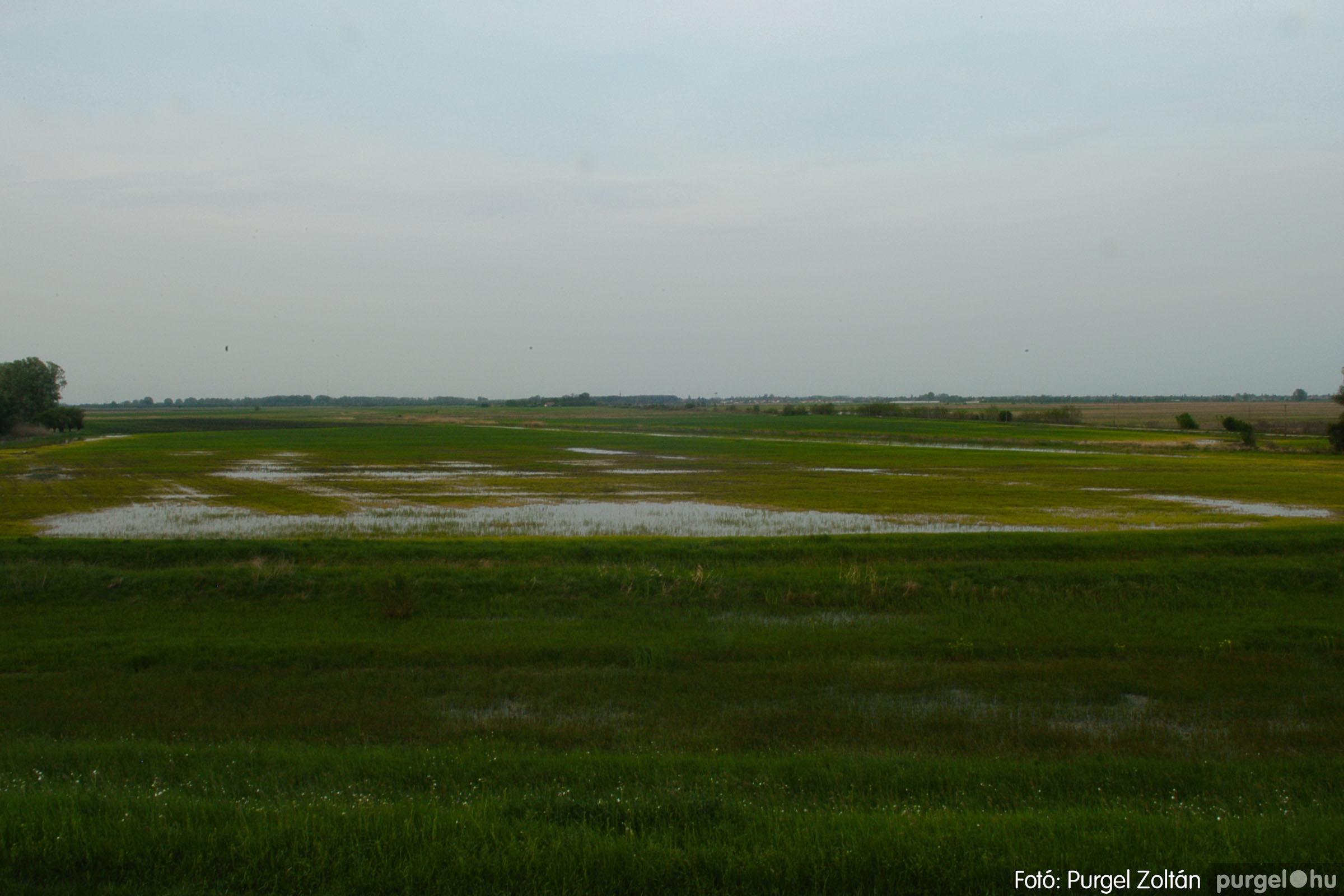 2006.04.29. 015 Tisza áradás - Fotó:PURGEL ZOLTÁN© DSC_0048q.jpg