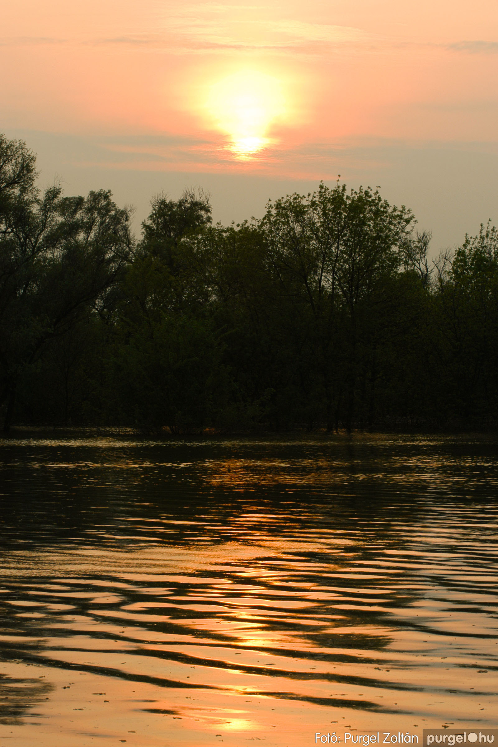 2006.04.29. 005 Tisza áradás - Fotó:PURGEL ZOLTÁN© DSC_0028q.jpg