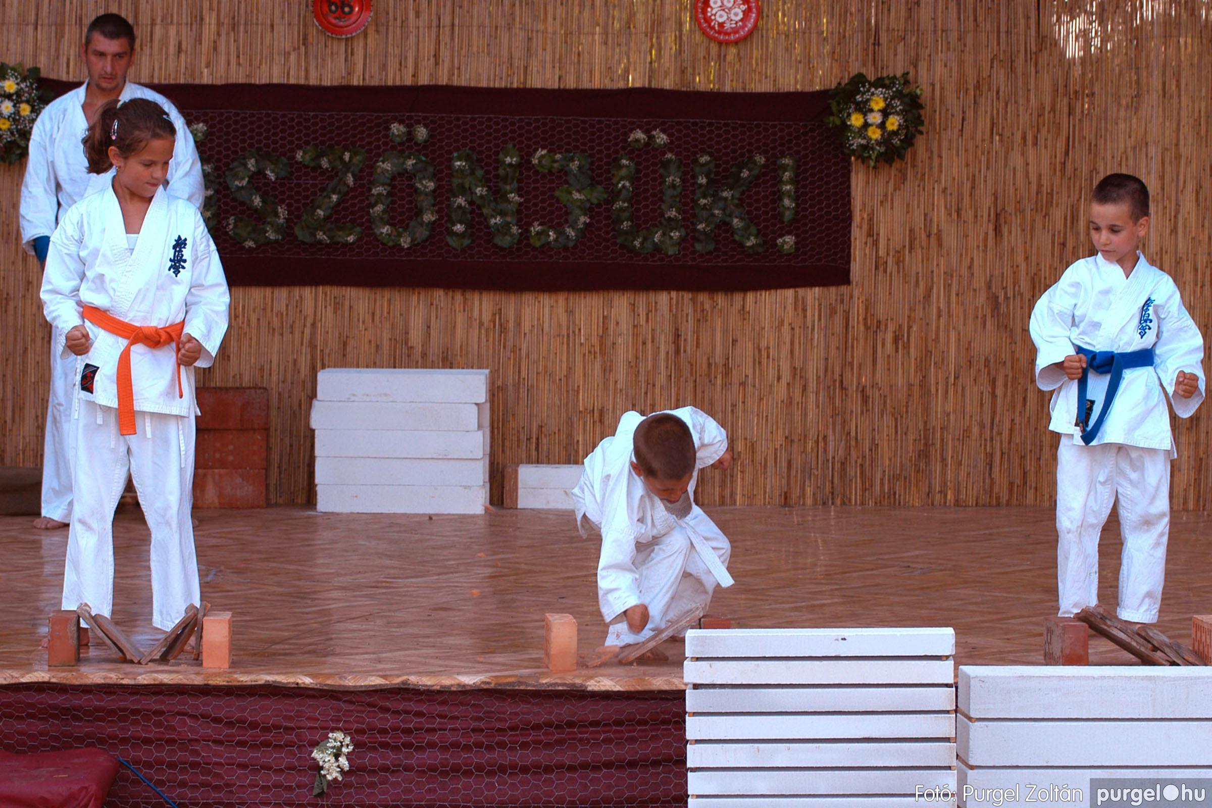 2006.06.24. 159 Szegváriak Szegvárért Közösségfejlesztők Egyesület köszönet napja - Fotó:PURGEL ZOLTÁN©.jpg