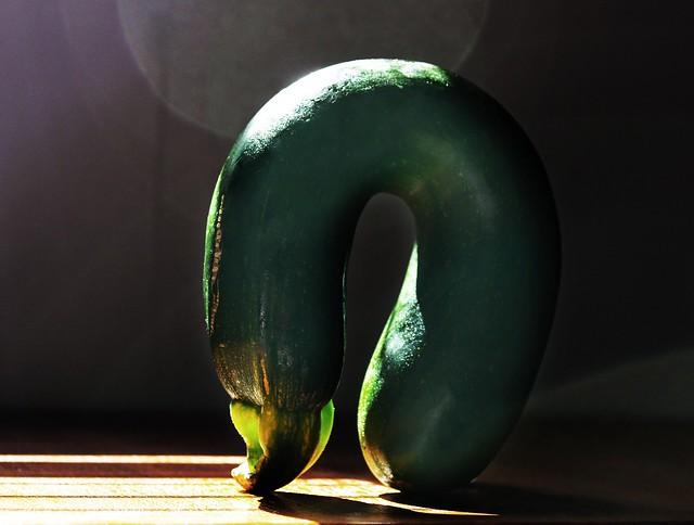 zucchini takes a bow