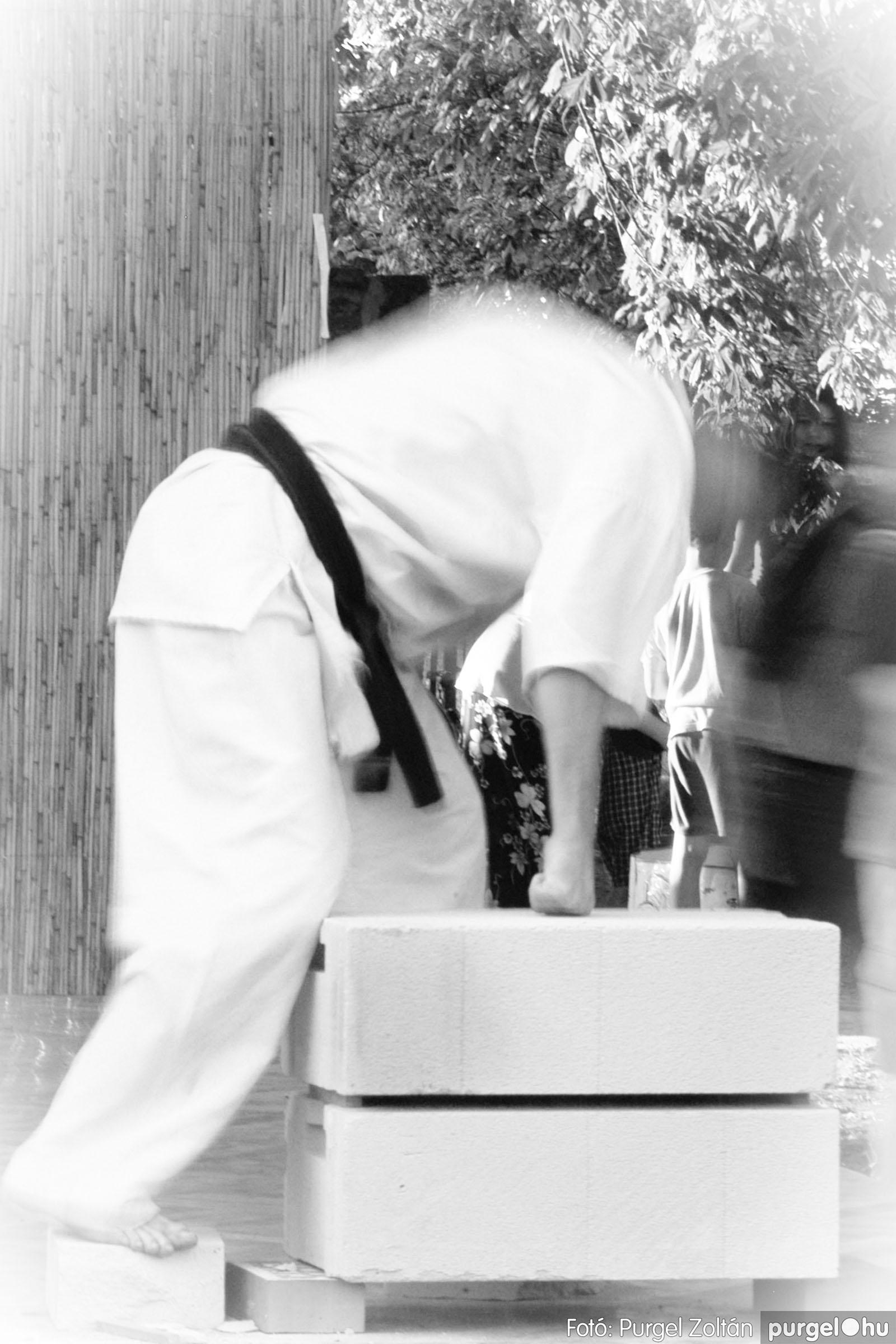 2006.06.24. 162 Szegváriak Szegvárért Közösségfejlesztők Egyesület köszönet napja - Fotó:PURGEL ZOLTÁN©.jpg