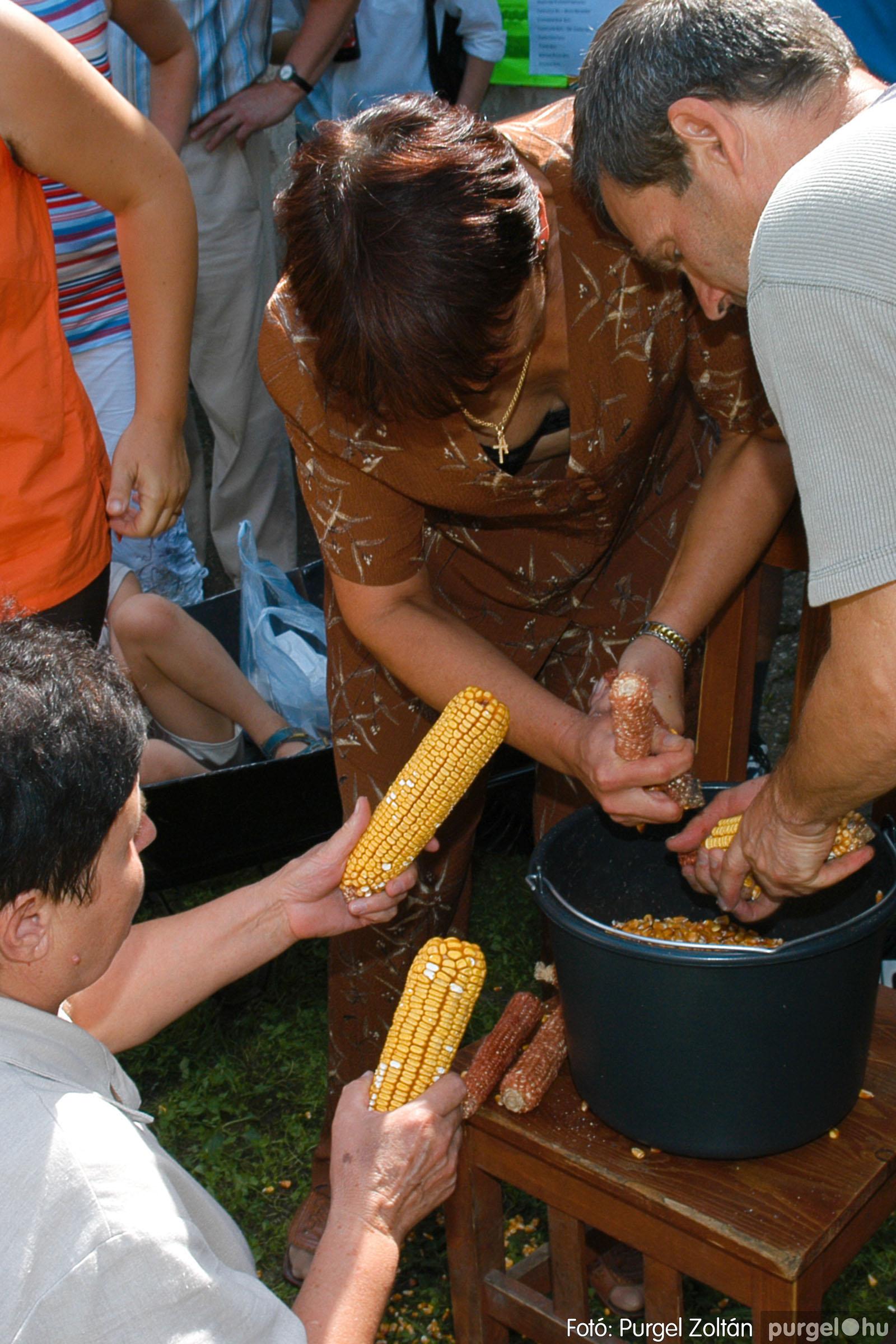 2006.08.20. 474 Szegvári falunapok - 3. nap - Fotó:PURGEL ZOLTÁN© DSC_0168q.jpg