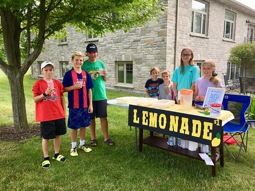 Lemonade stand 2019