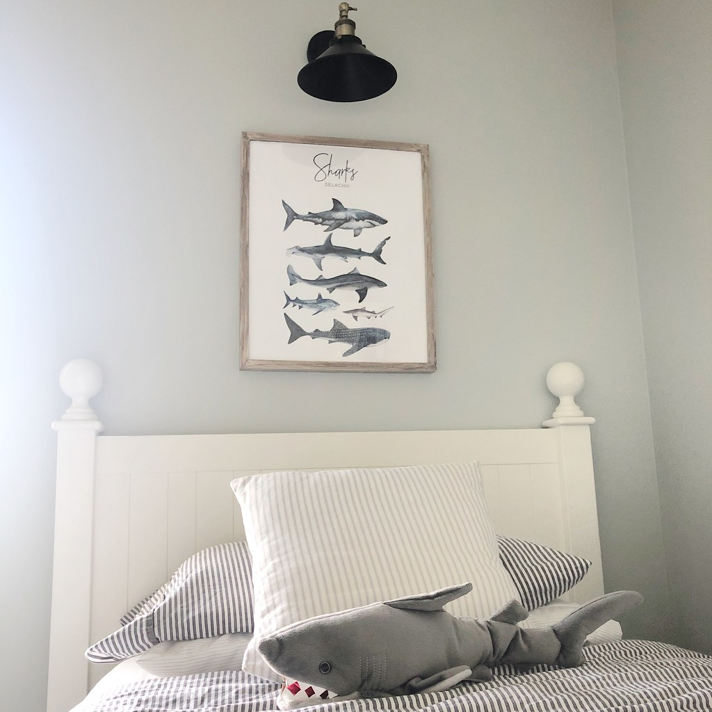 Shark Bedroom