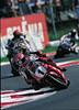 Ducati 996 SPS FOGARTY REPLICA 1999 - 1