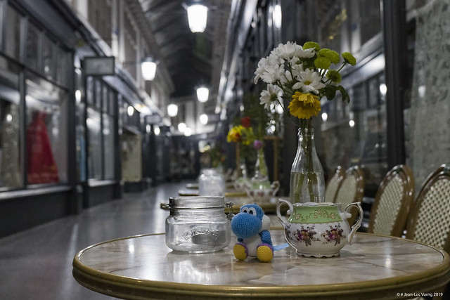 Yoshi is fancy a midnight tea