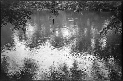 danglingbranch overhangingbranches movingwater reflections frenchbroadriver asheville northcarolina nikonsmiletaker derevpan400 hc110developer landscape monochrome monochromatic blackandwhite 35mm 35mmfilm film