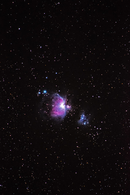 Orion Nebula at 300mm - Guilderton, Western Australia