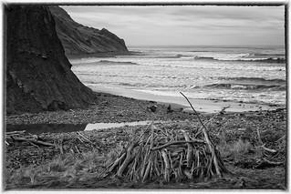 Image Gatherers at Mackintoshes Beach, North Canterbury, South Island, New Zealand
