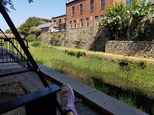 Swinging by the Canal