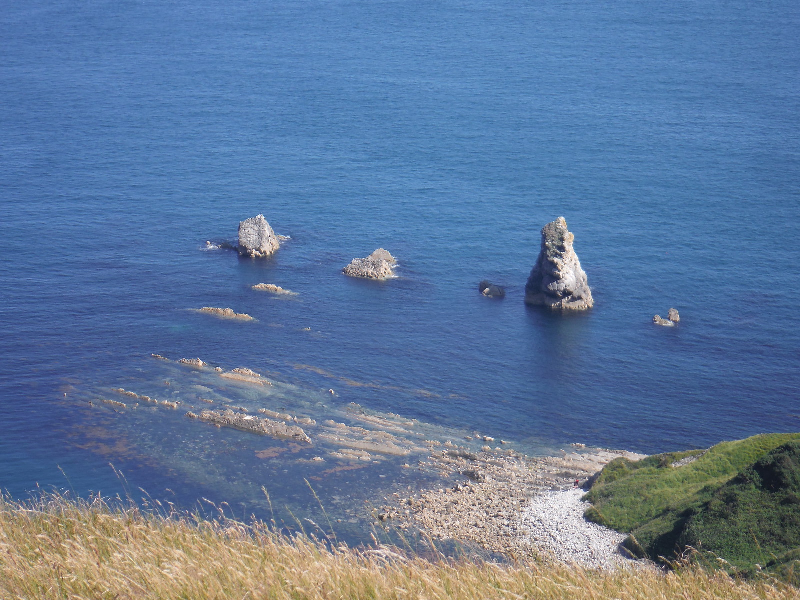 Some Rocks SWC Walk 54 - Lulworth Cove Circular (via Tyneham and Durdle Door)