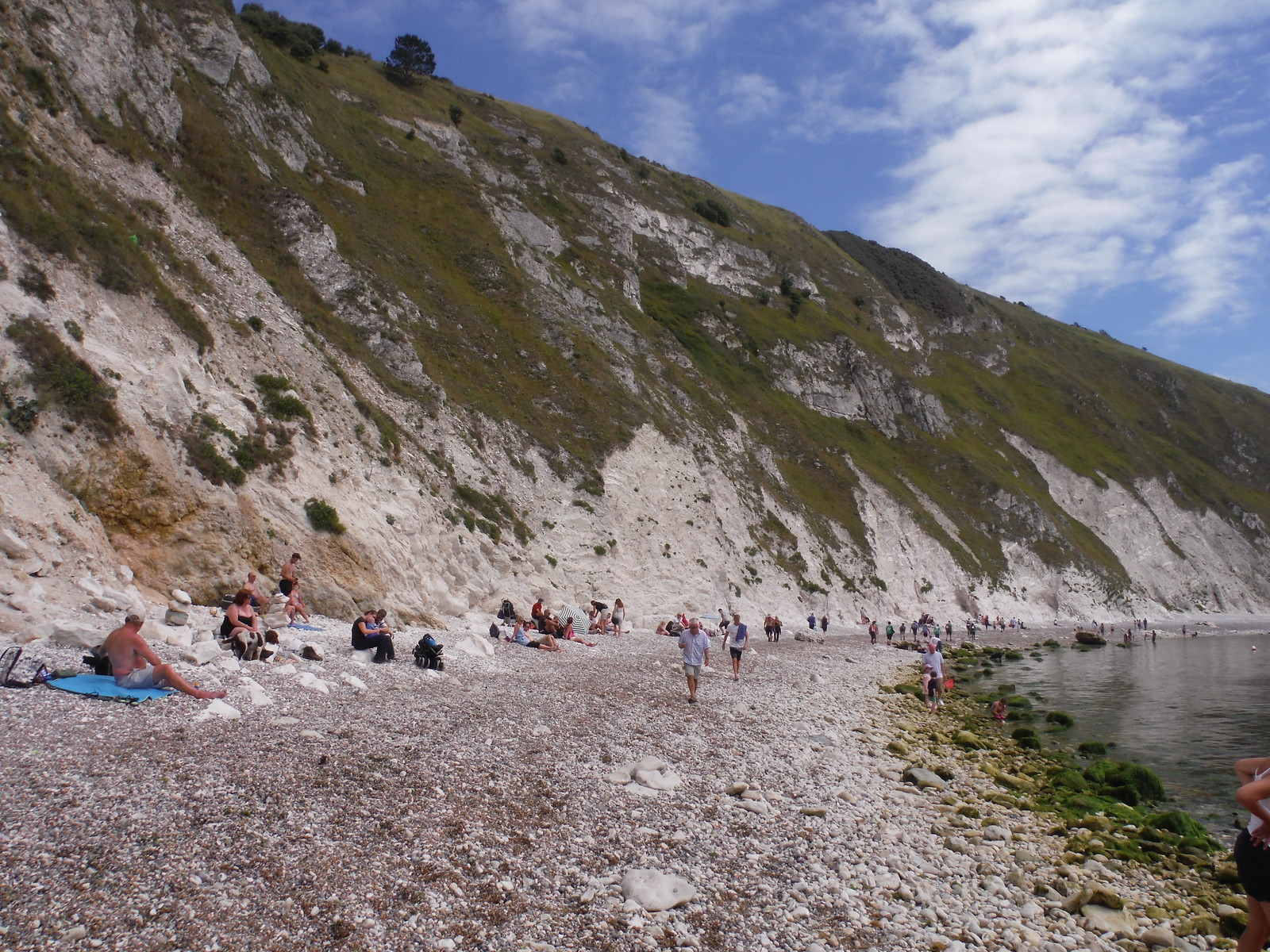 Lulworth Cove Beach SWC Walk 54 - Lulworth Cove Circular (via Tyneham and Durdle Door)