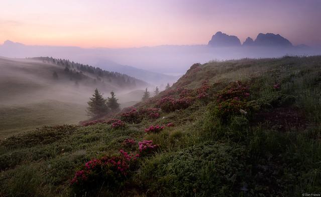 Mists of dawn