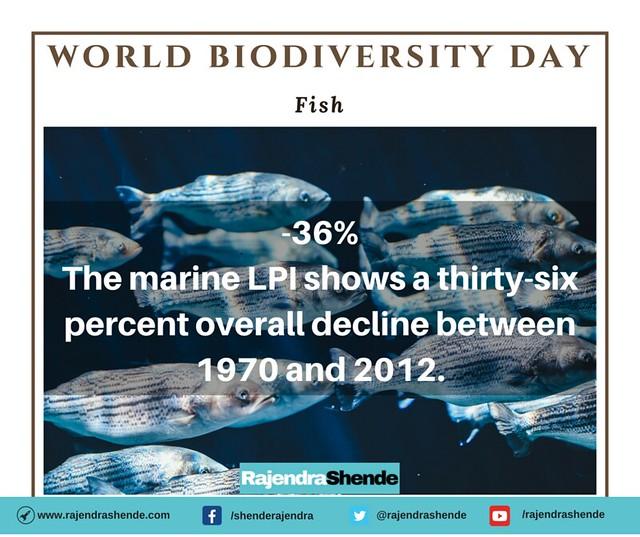 world biodiversity day (3)