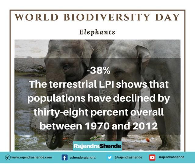 world biodiversity day (1)