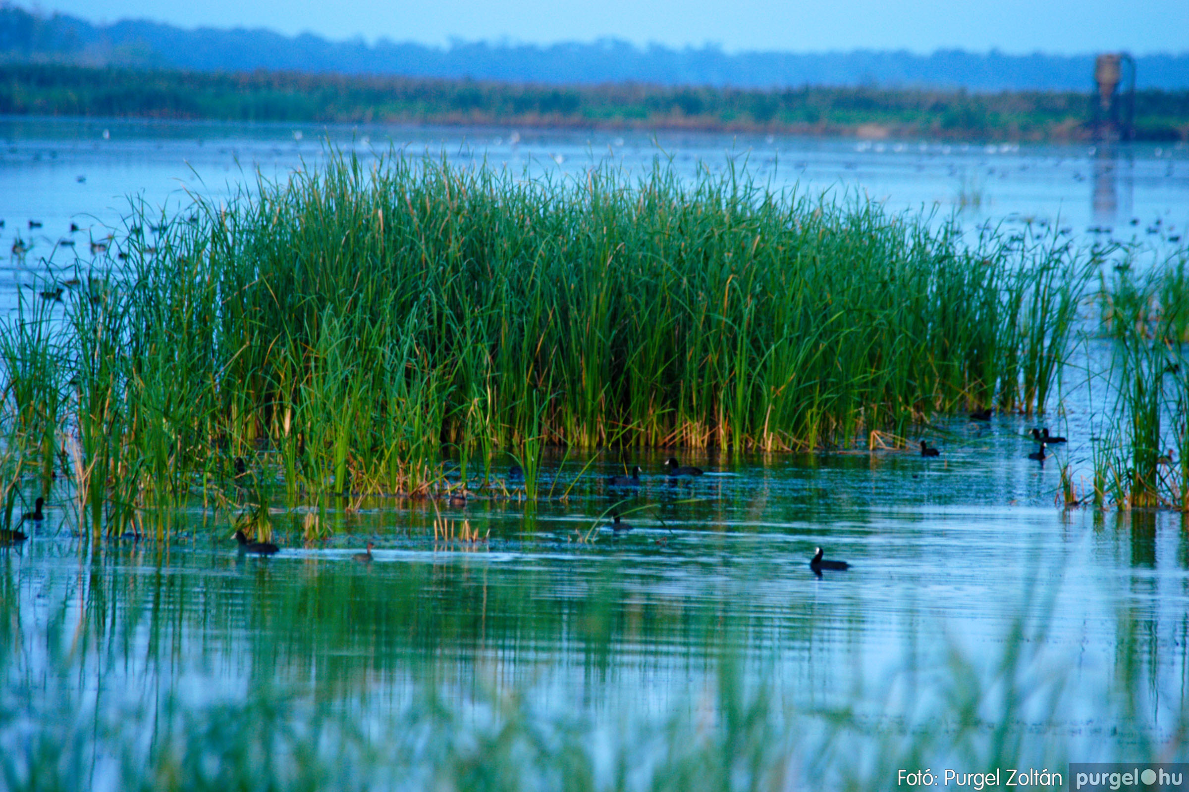 2006.09.03. 002 Barangolás a Cickazugban - Fotó:PURGEL ZOLTÁN© DSC_0007q.jpg