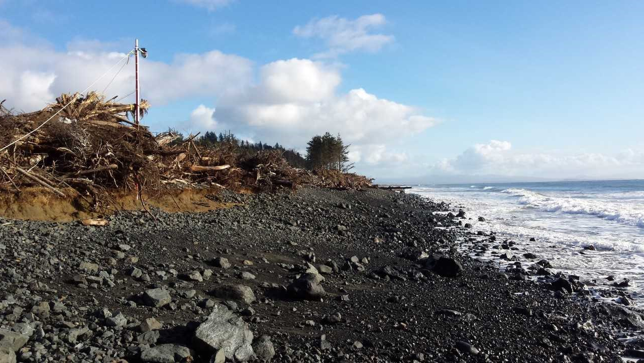 Photo of rocky beach in North Cove, Washington State, USA
