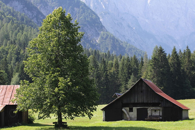 Slovenija felix