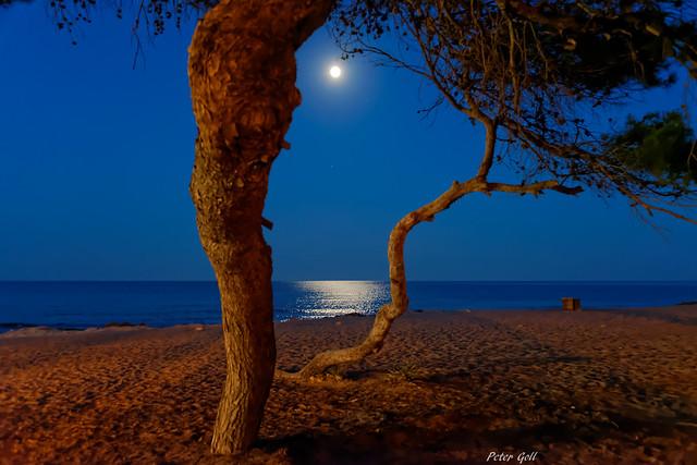 Mond - Mallorca - Canyamel