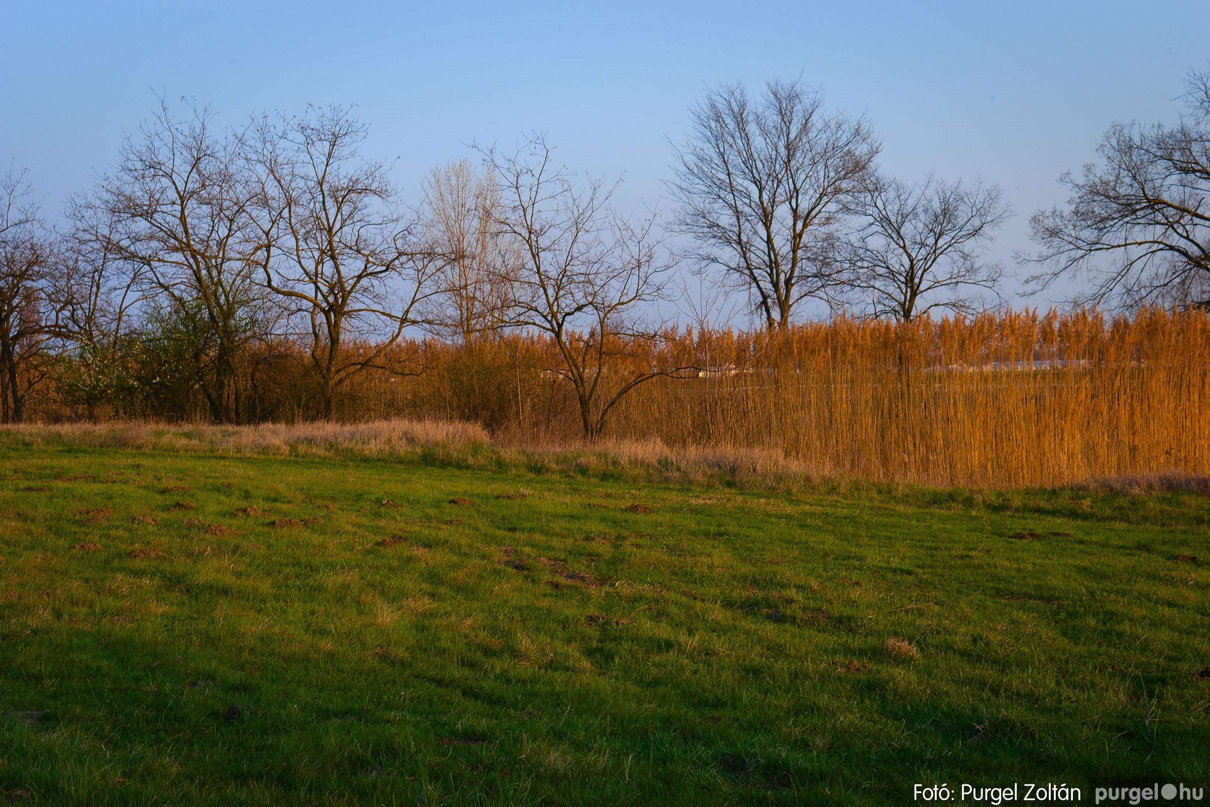 2007.03.16. 005 Éledező természet a Csordajáráson - Fotó:PURGEL ZOLTÁN© DSC_0026q.jpg