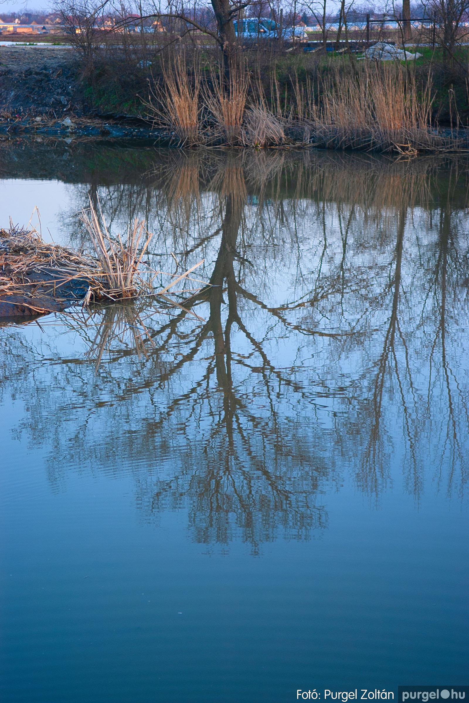2007.03.16. 029 Éledező természet a Csordajáráson - Fotó:PURGEL ZOLTÁN© DSC_0076q.jpg