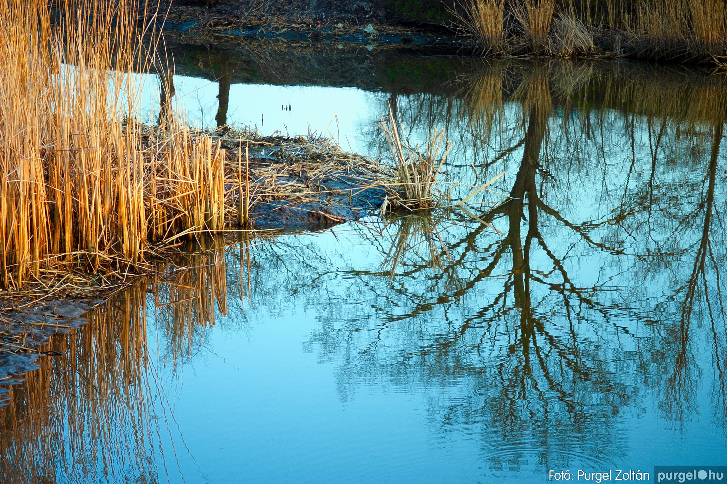 2007.03.16. 028 Éledező természet a Csordajáráson - Fotó:PURGEL ZOLTÁN© DSC_0075q.jpg