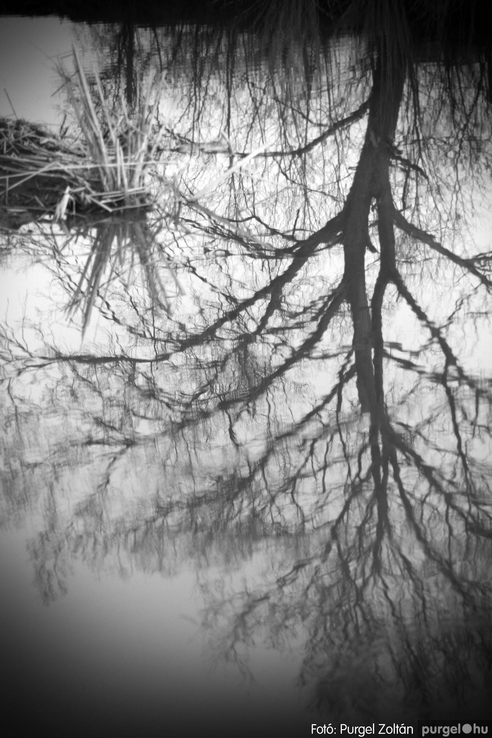 2007.03.16. 027 Éledező természet a Csordajáráson - Fotó:PURGEL ZOLTÁN© DSC_0073q.jpg