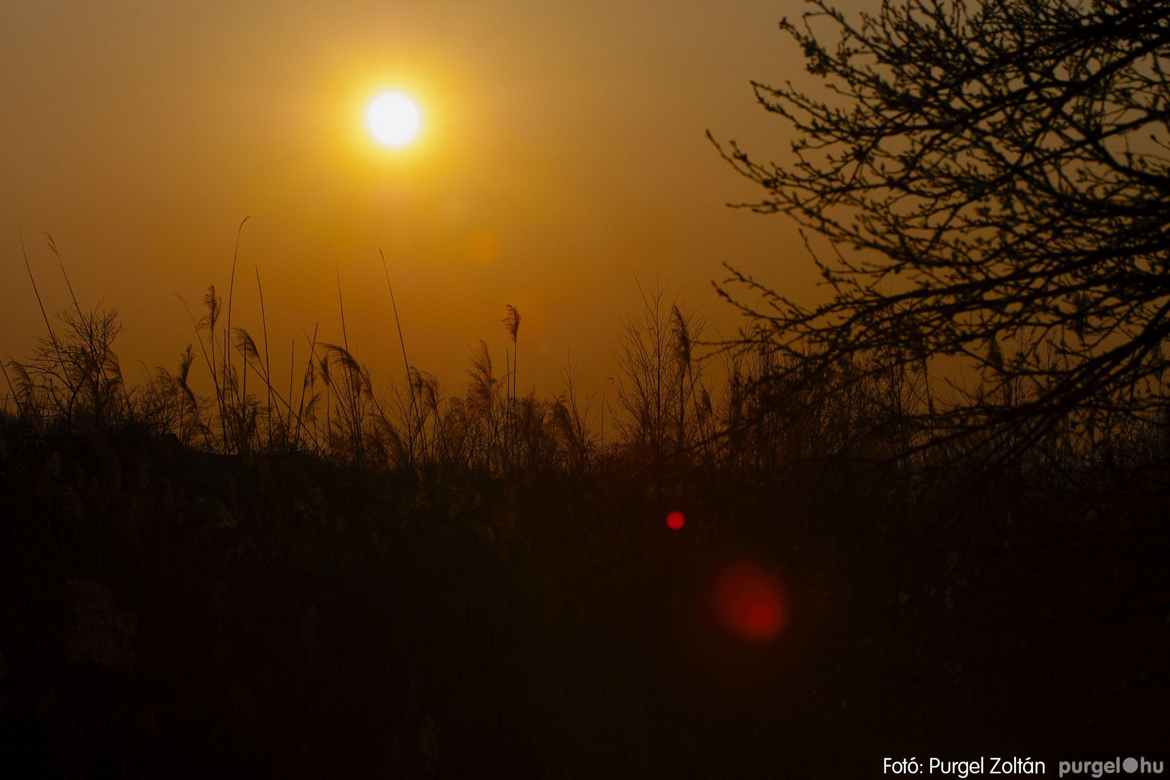 2007.03.16. 024 Éledező természet a Csordajáráson - Fotó:PURGEL ZOLTÁN© DSC_0066q.jpg