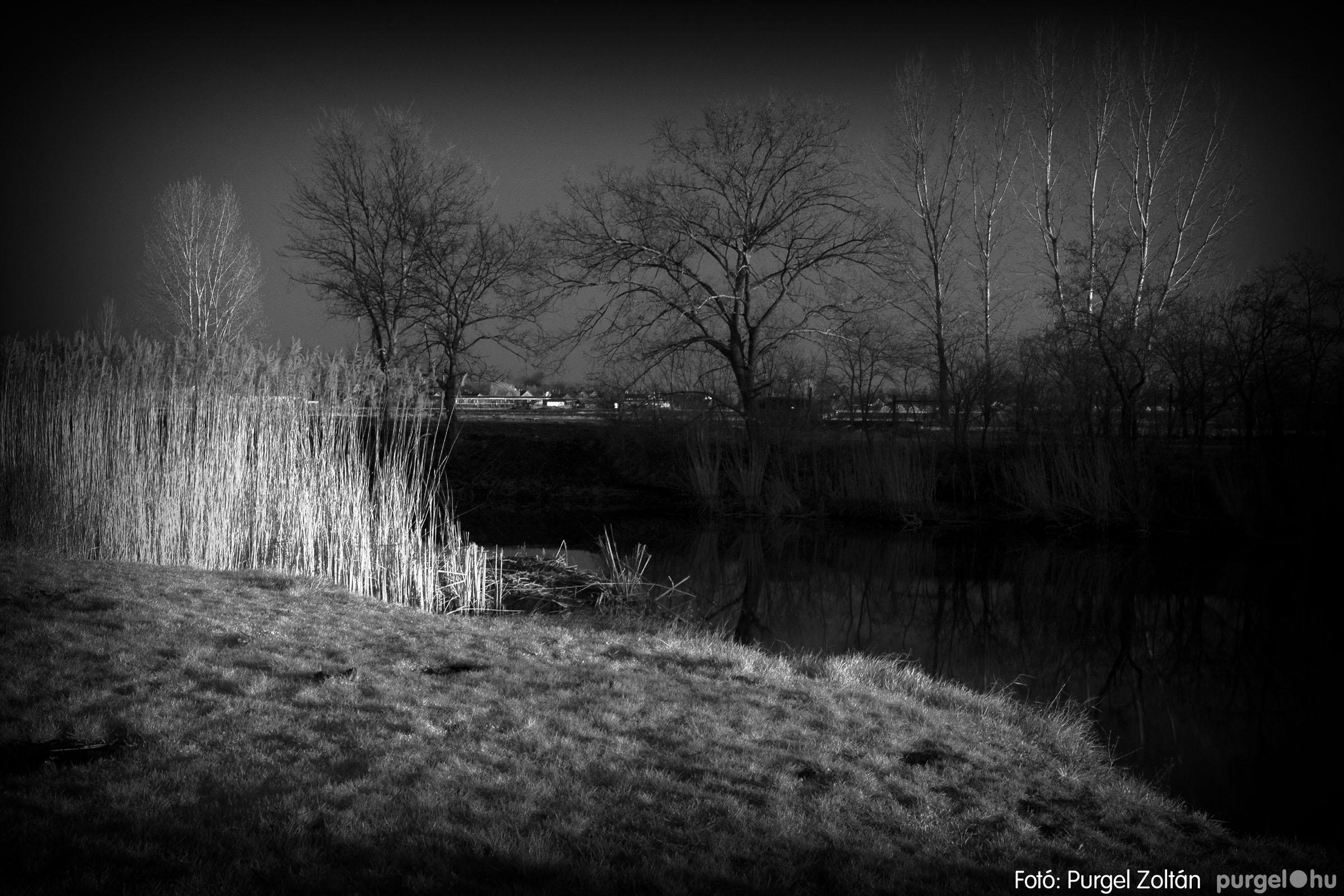 2007.03.16. 021 Éledező természet a Csordajáráson - Fotó:PURGEL ZOLTÁN© DSC_0059q.jpg