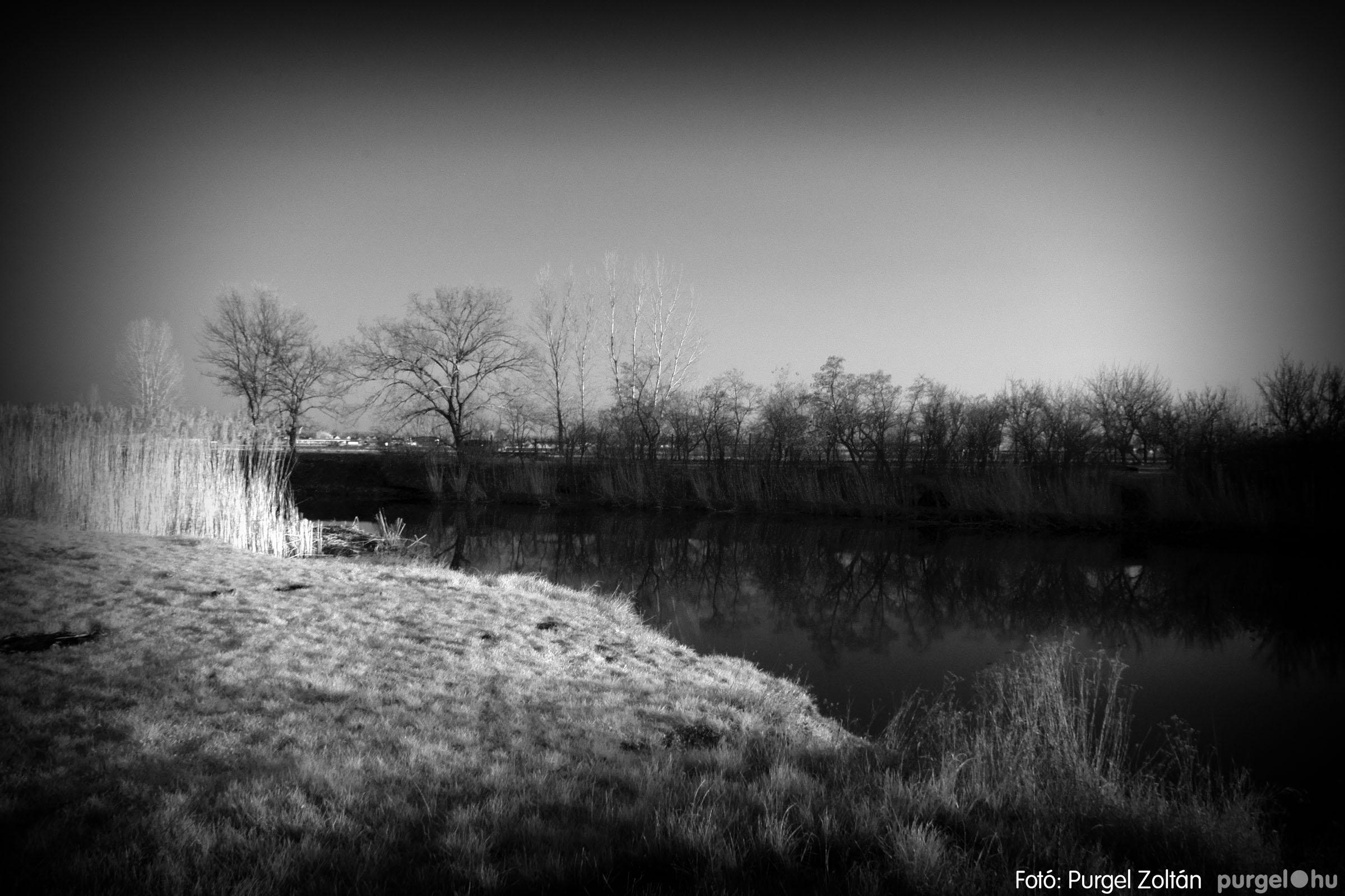 2007.03.16. 020 Éledező természet a Csordajáráson - Fotó:PURGEL ZOLTÁN© DSC_0057q.jpg