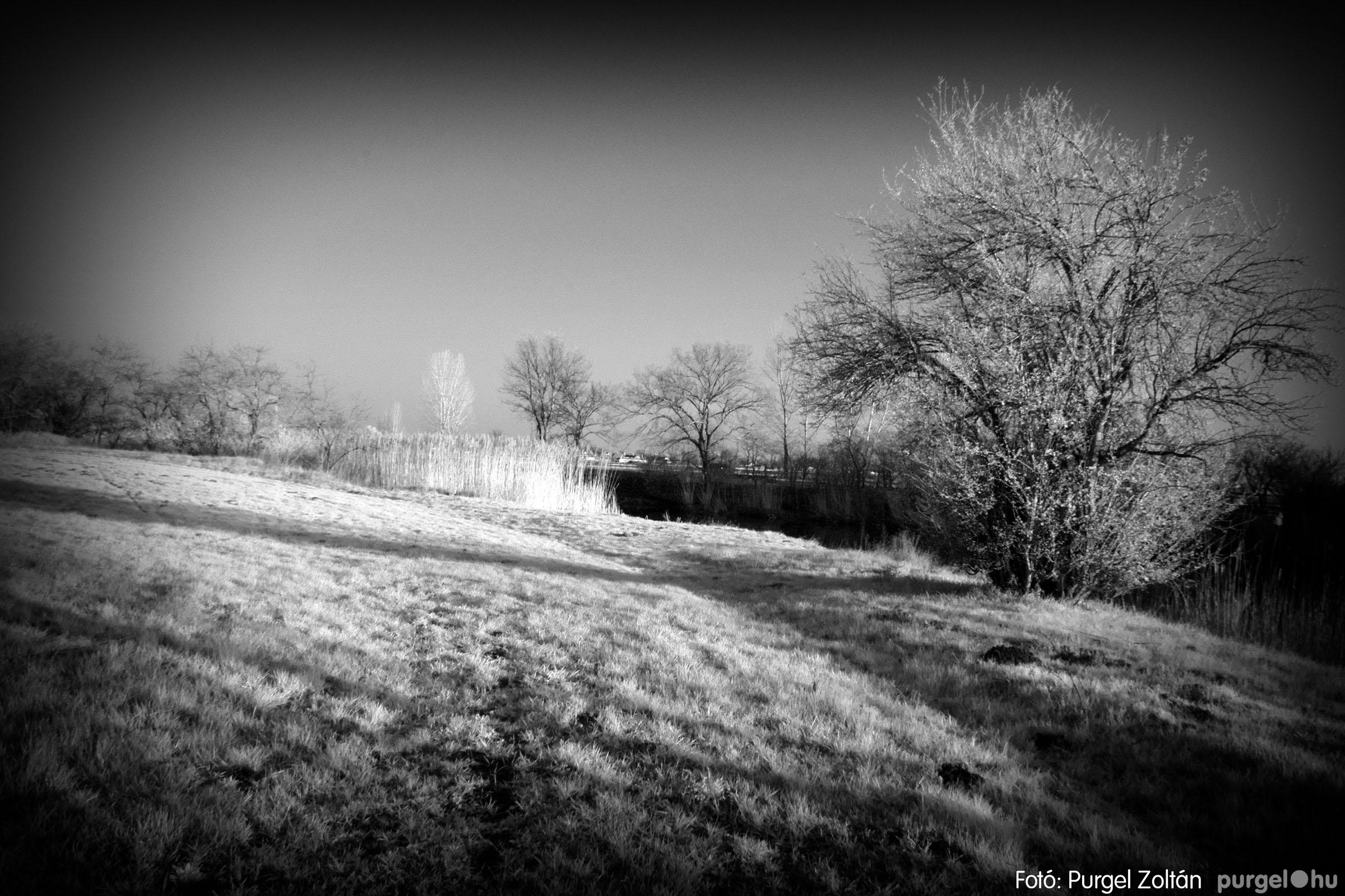 2007.03.16. 019 Éledező természet a Csordajáráson - Fotó:PURGEL ZOLTÁN© DSC_0054q.jpg