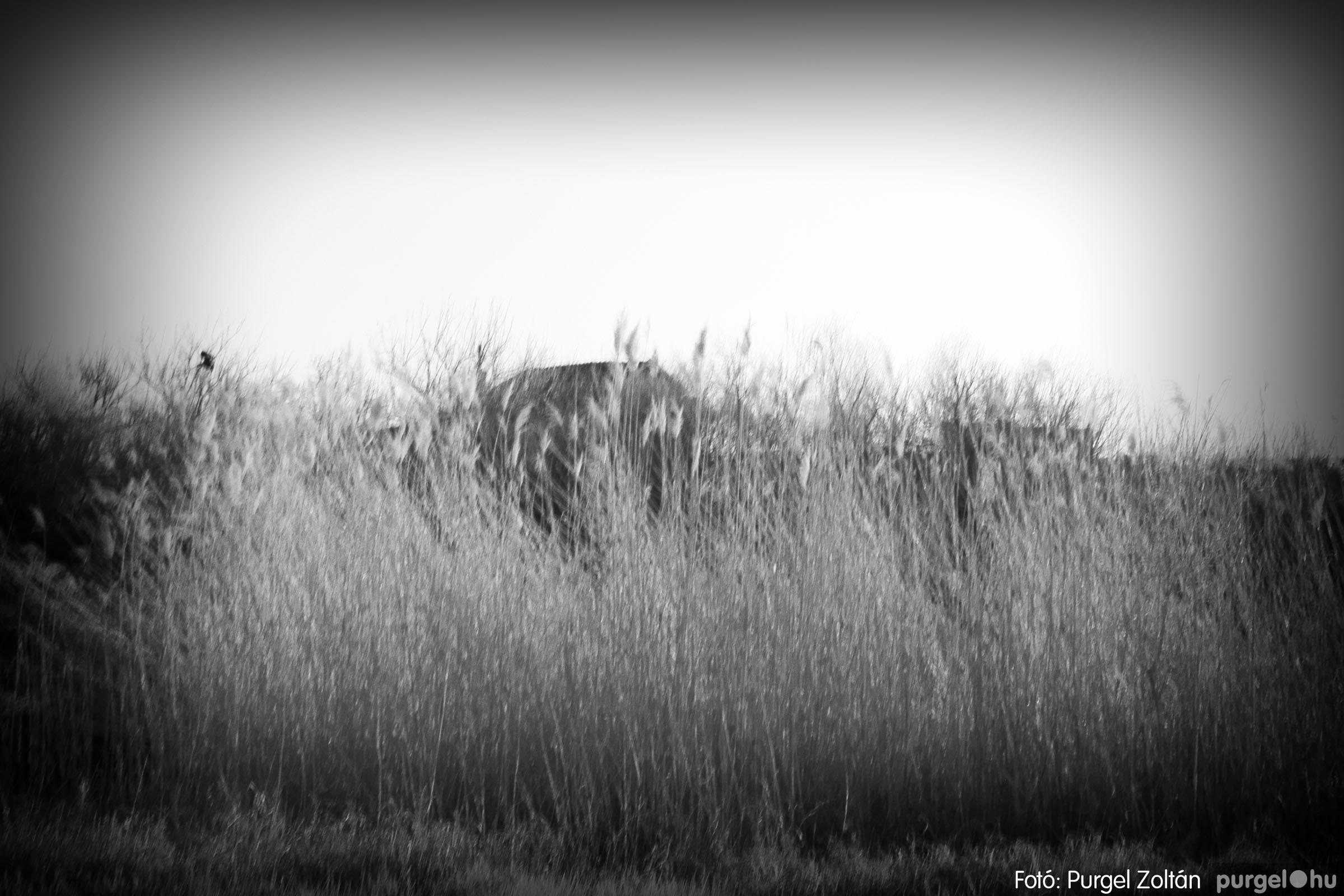 2007.03.16. 017 Éledező természet a Csordajáráson - Fotó:PURGEL ZOLTÁN© DSC_0050q.jpg