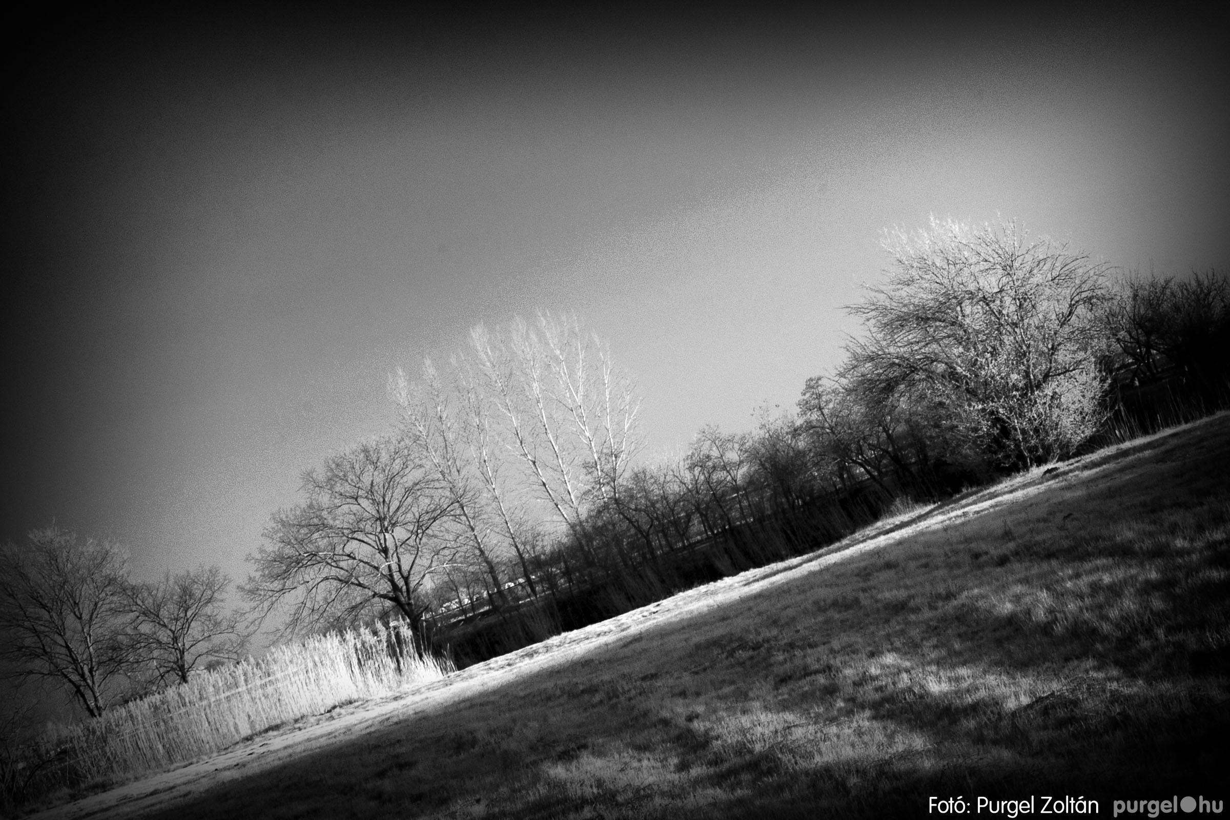 2007.03.16. 016 Éledező természet a Csordajáráson - Fotó:PURGEL ZOLTÁN© DSC_0049q.jpg