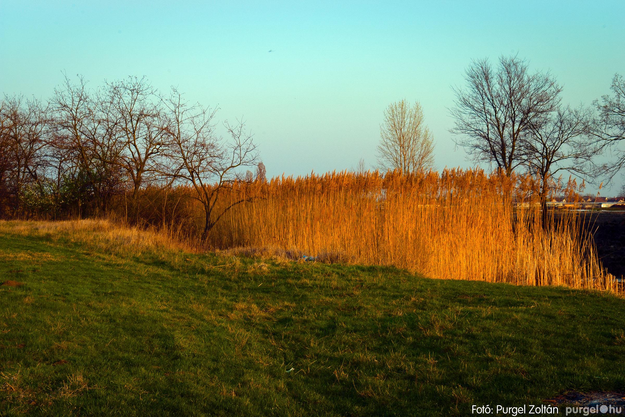 2007.03.16. 008 Éledező természet a Csordajáráson - Fotó:PURGEL ZOLTÁN© DSC_0033q.jpg