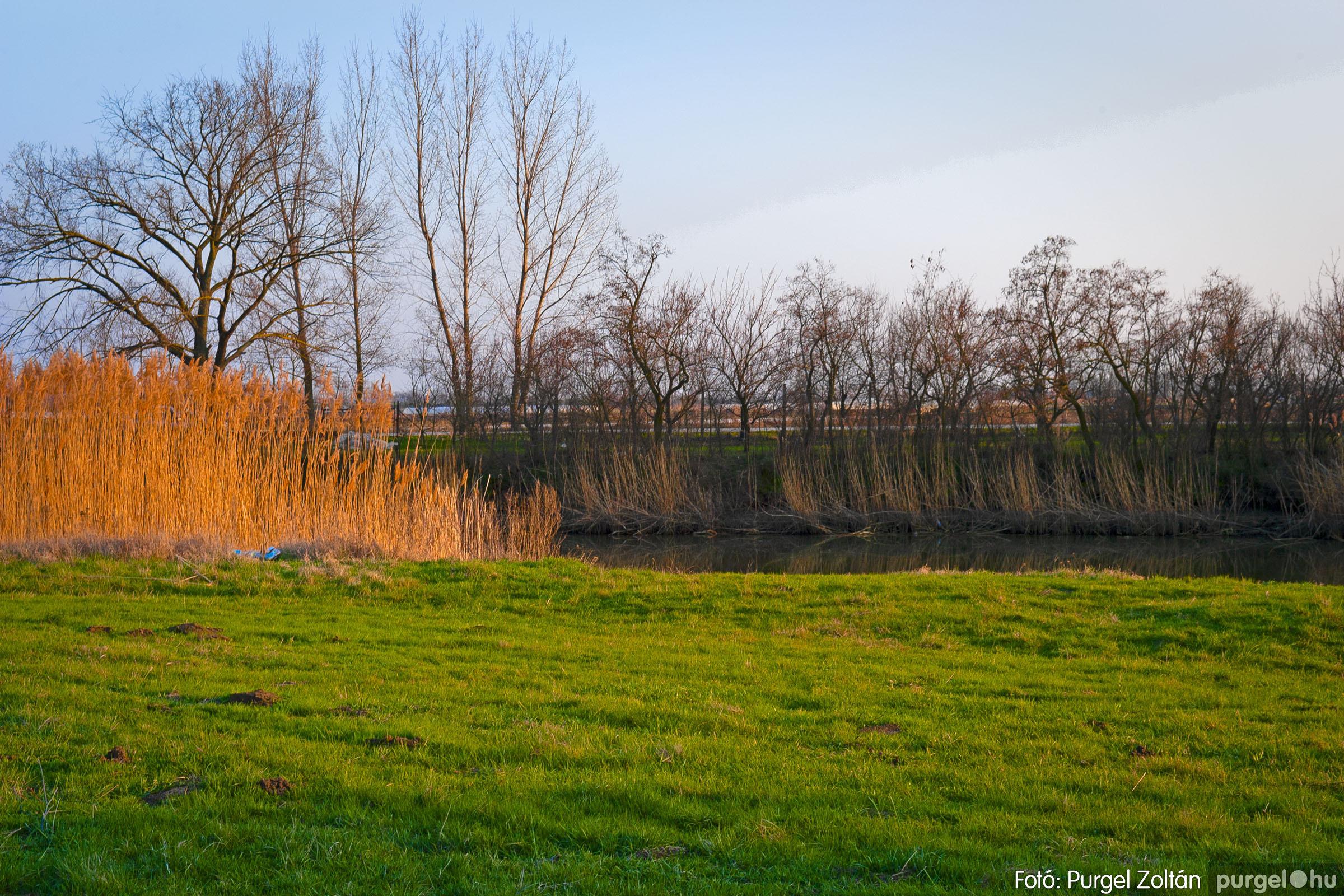 2007.03.16. 006 Éledező természet a Csordajáráson - Fotó:PURGEL ZOLTÁN© DSC_0027q.jpg