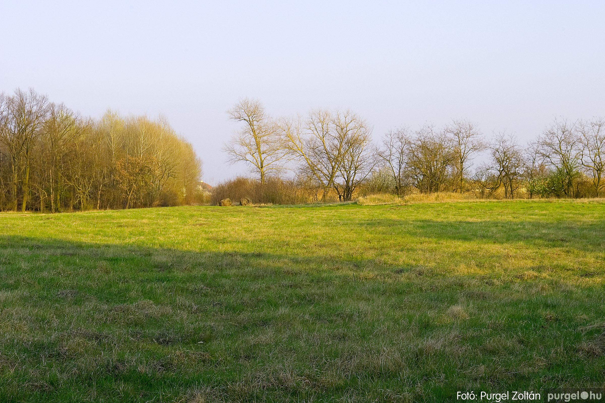 2007.03.16. 003 Éledező természet a Csordajáráson - Fotó:PURGEL ZOLTÁN© DSC_0023q.jpg