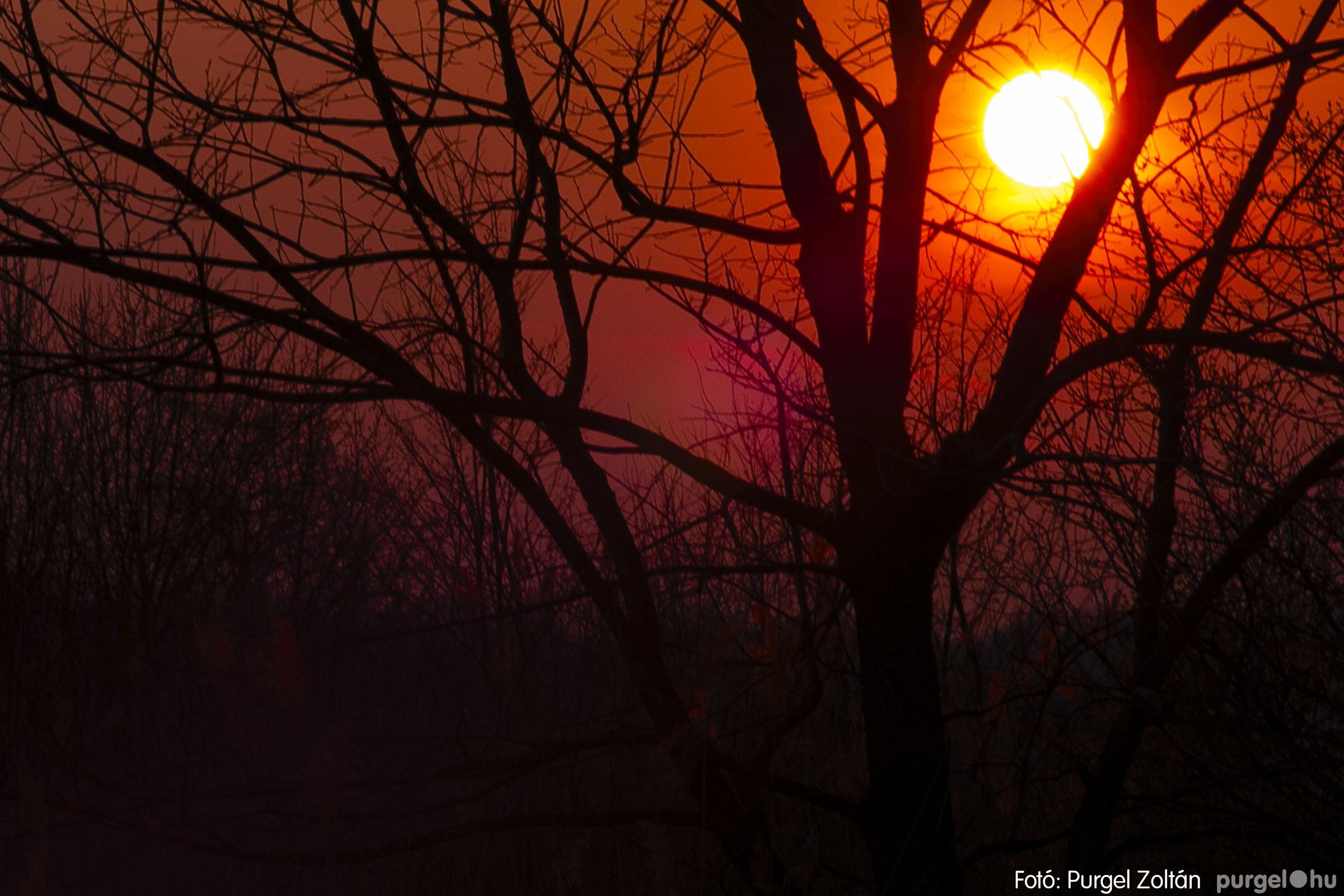 2007.03.16. 034 Éledező természet a Csordajáráson - Fotó:PURGEL ZOLTÁN© DSC_0086q.jpg