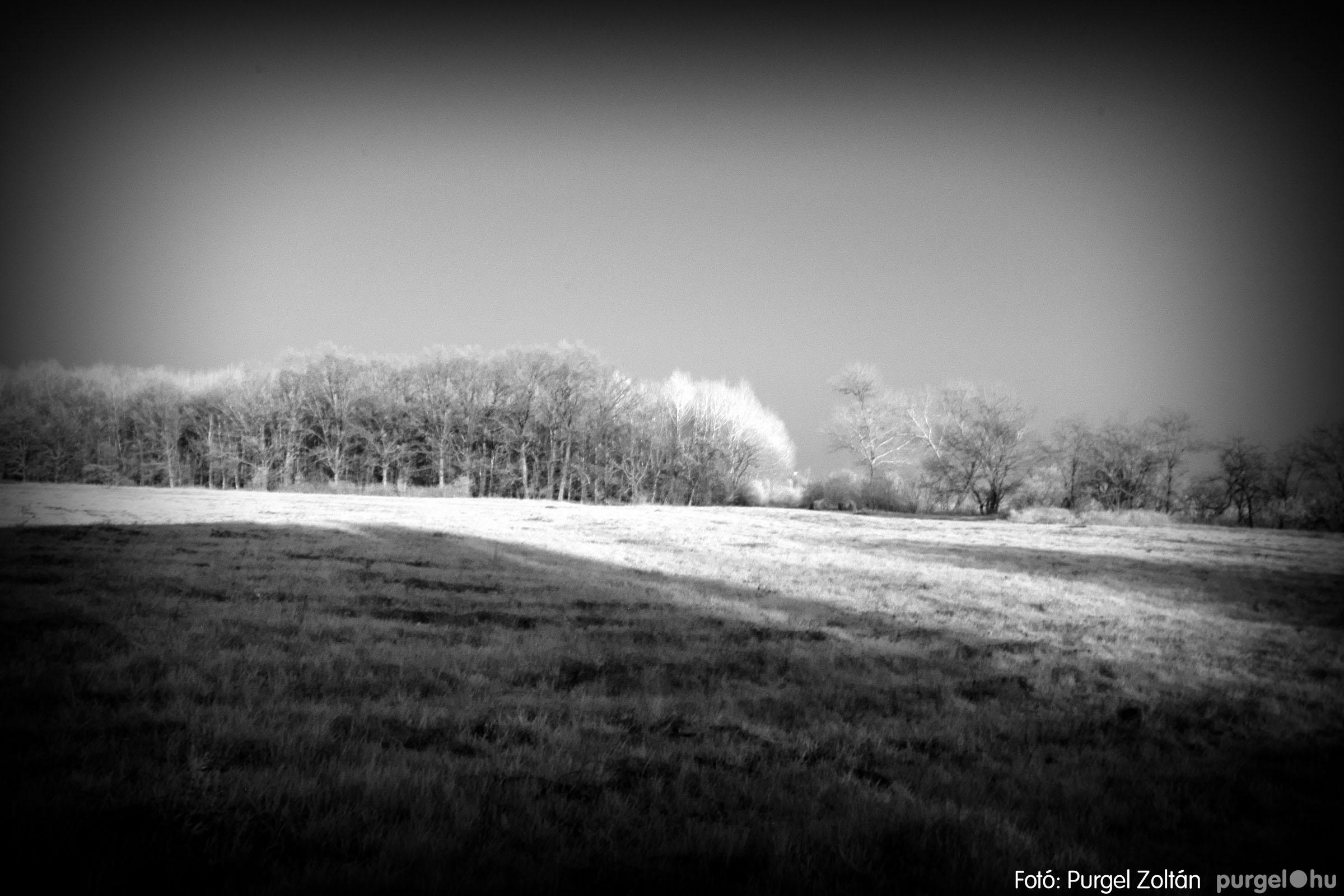 2007.03.16. 013 Éledező természet a Csordajáráson - Fotó:PURGEL ZOLTÁN© DSC_0043q.jpg