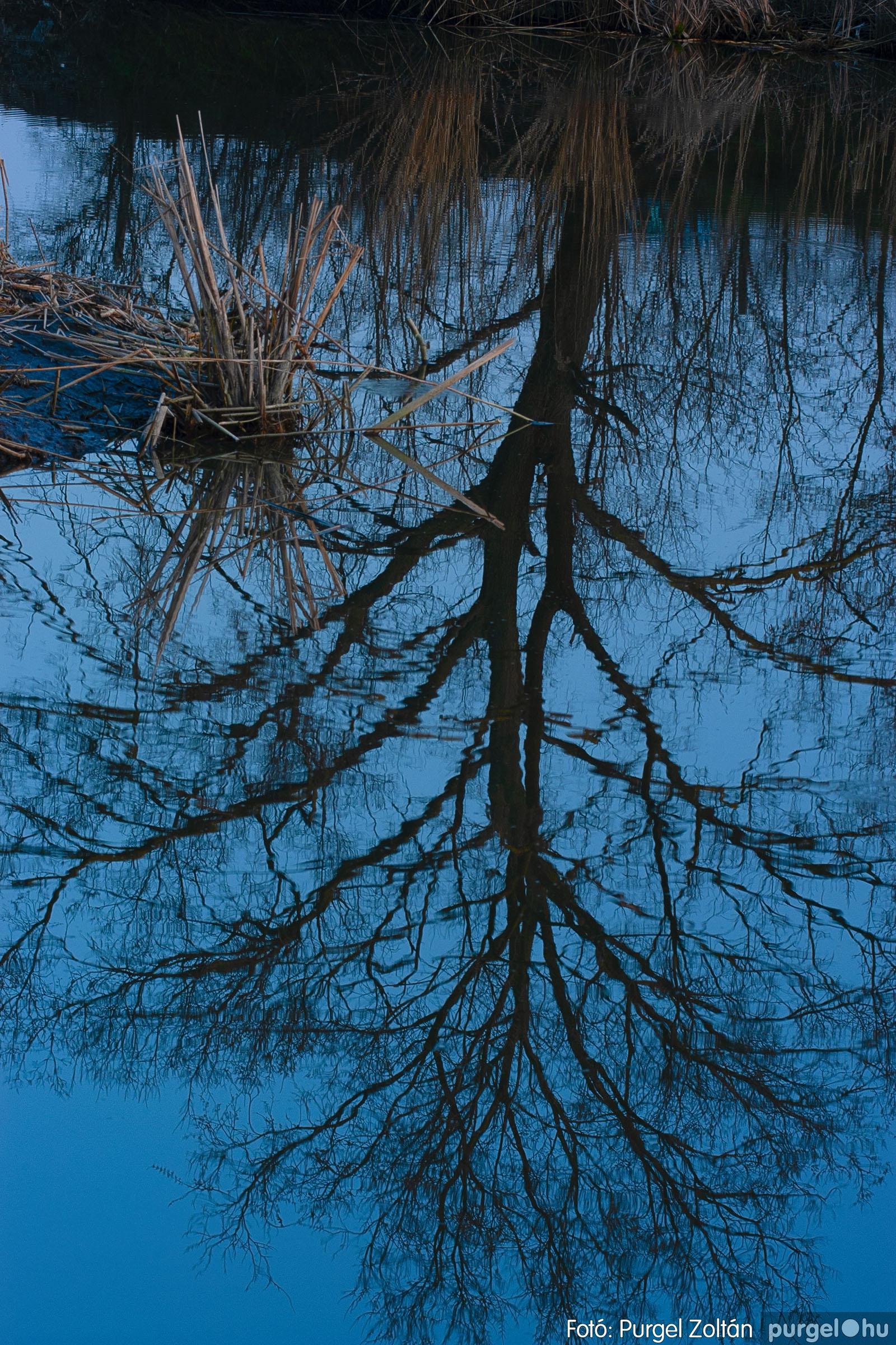 2007.03.16. 032 Éledező természet a Csordajáráson - Fotó:PURGEL ZOLTÁN© DSC_0080q.jpg