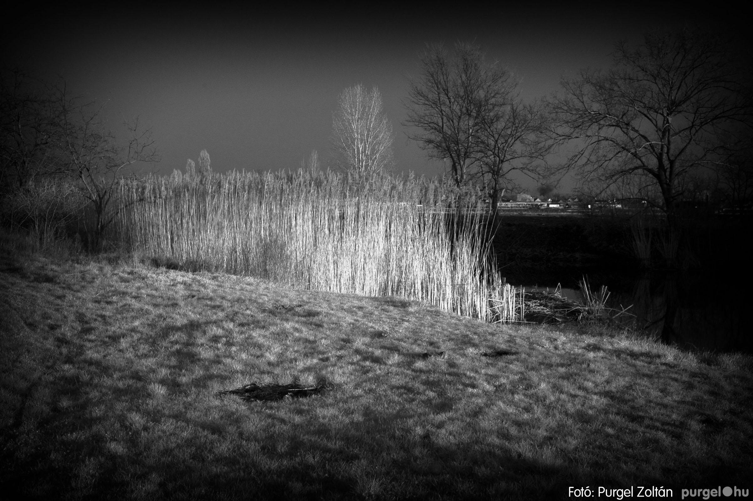 2007.03.16. 022 Éledező természet a Csordajáráson - Fotó:PURGEL ZOLTÁN© DSC_0061q.jpg