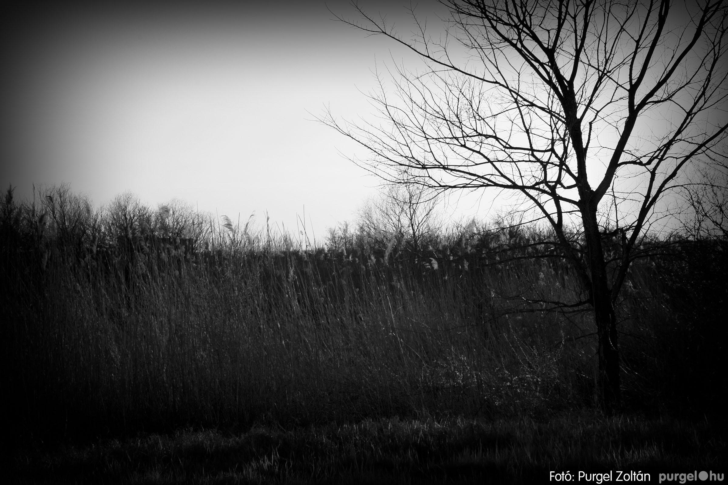 2007.03.16. 018 Éledező természet a Csordajáráson - Fotó:PURGEL ZOLTÁN© DSC_0051q.jpg