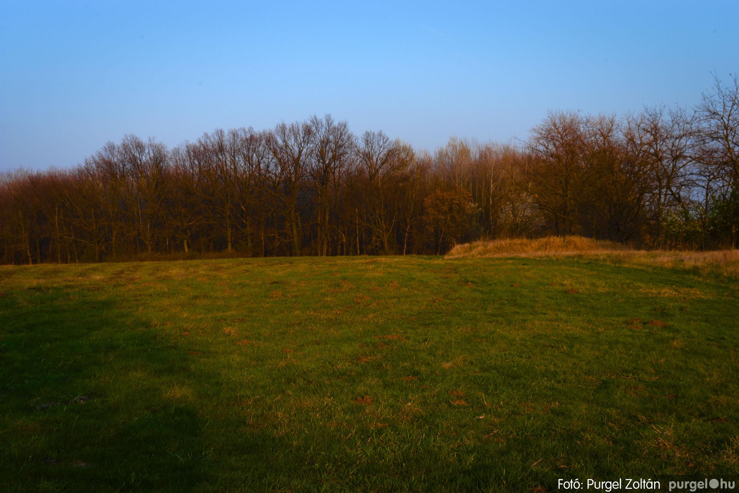 2007.03.16. 007 Éledező természet a Csordajáráson - Fotó:PURGEL ZOLTÁN© DSC_0032q.jpg