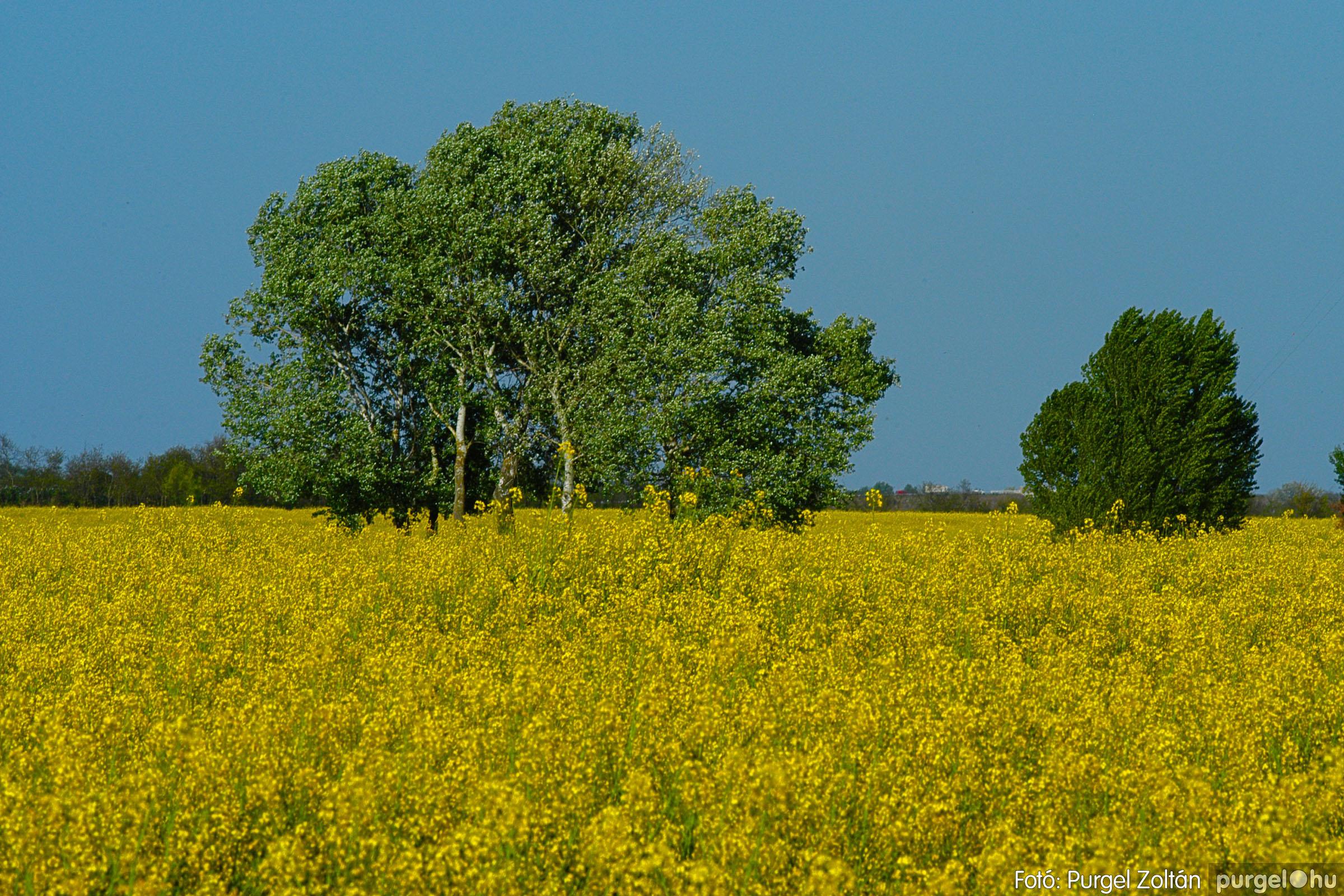 2007.04.21. 012 Szélmalom és Kontra - Fotó:PURGEL ZOLTÁN© DSC_0025q.jpg