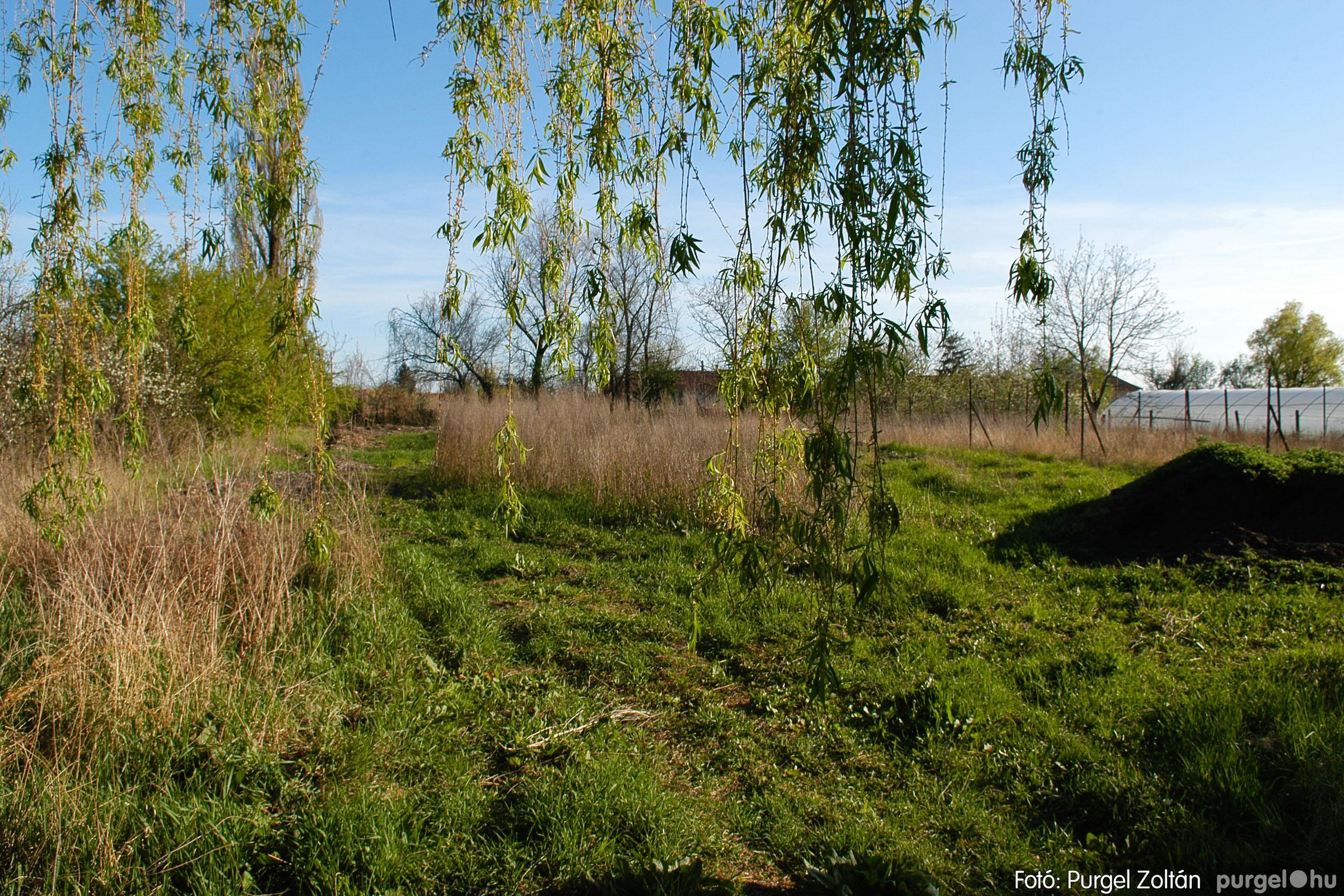 2007.04.08. 012 Látogatás az egykori iskolai gyakorlókertben - Fotó:PURGEL ZOLTÁN© DSC_0222q.jpg
