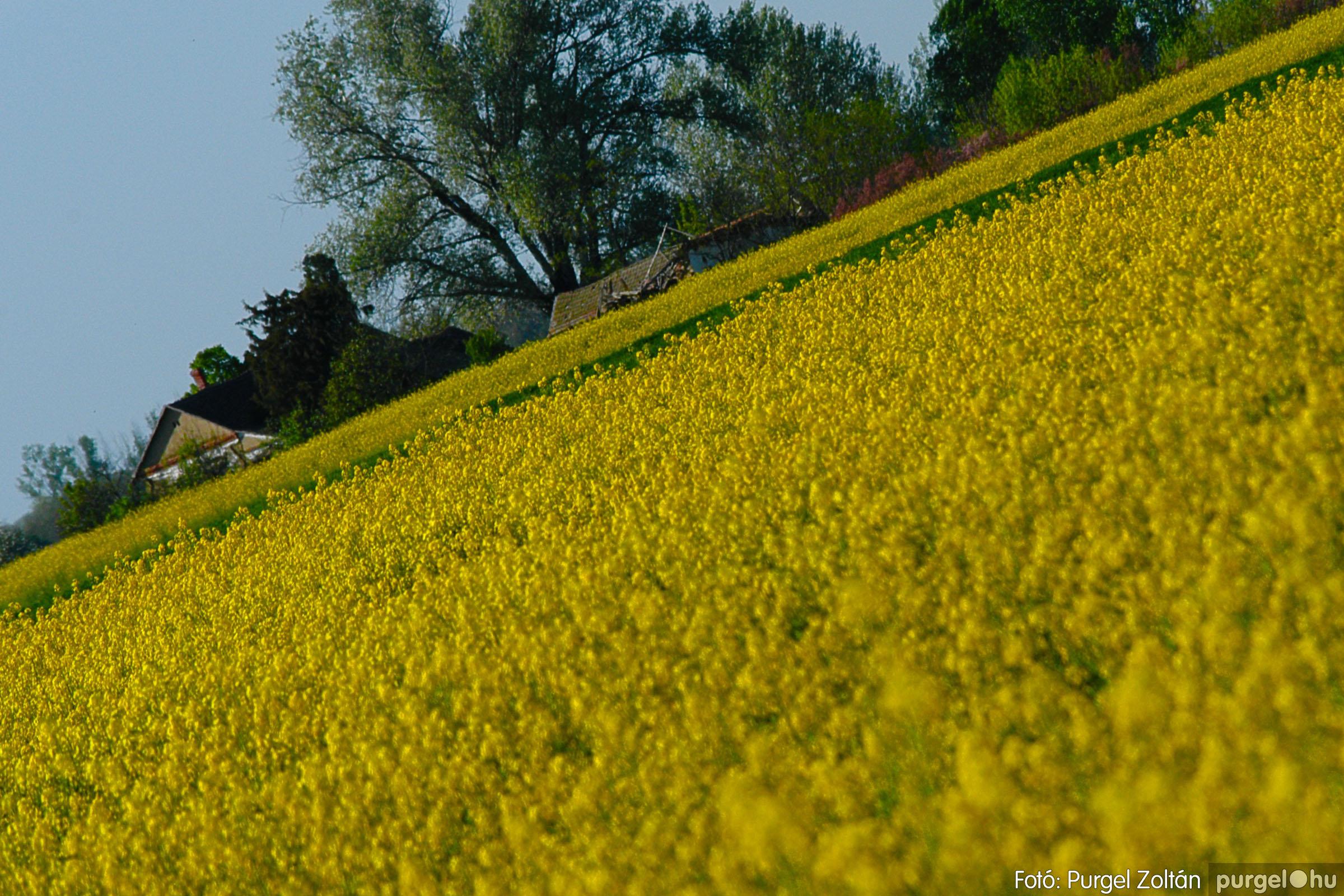 2007.04.21. 007 Szélmalom és Kontra - Fotó:PURGEL ZOLTÁN© DSC_0017q.jpg